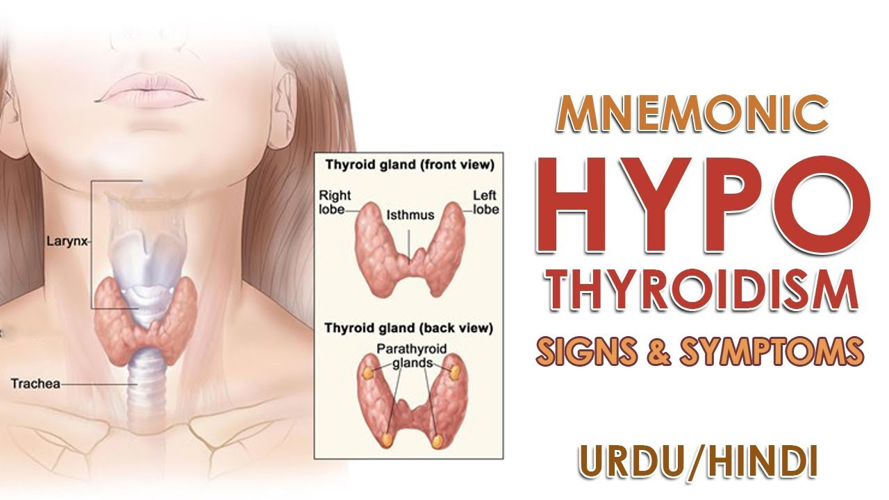 Mnemonic Hypothyroidism Signs And Symptoms Urdu Hindi Youtube