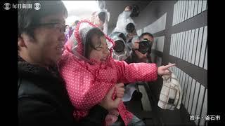 東日本大震災から8年 被災地の朝