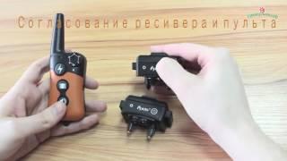 Электронный ошейник для дрессировки собак PET619