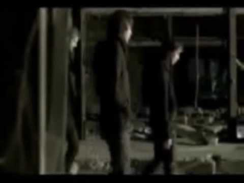 Клип White Lies - Taxidermy