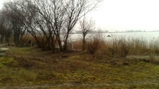 Поплавкові риболовля на озері у д. Рідше 7.03.2016 р. Float fishing on a lake of d.Zhidche