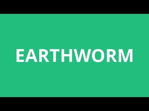 How To Pronounce Earthworm - Pronunciation Academy