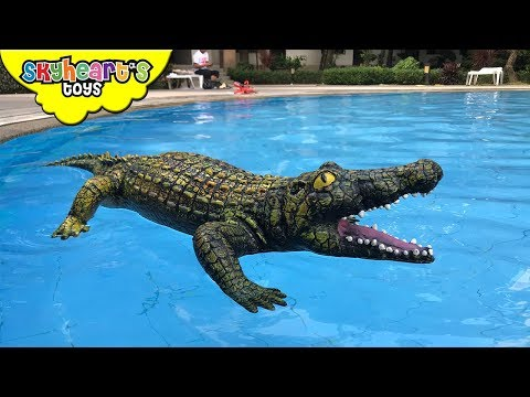 GIANT CROCODILE in our swimming pool! Skyheart orca whale pool battle with alligator sharks toys