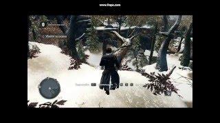 Assassins Creed Rogue на очень слабом пк