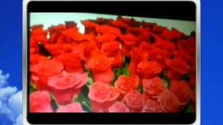 открытки с цветами любимой маме