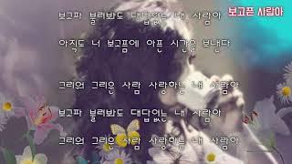보고픈 사람아 - 김세현