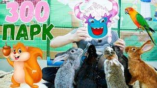 ТроЛЛикс в ЗООПАРКЕ Учим ЖивотныхОбучающие видео для детей Развивающие видео для самых маленьких
