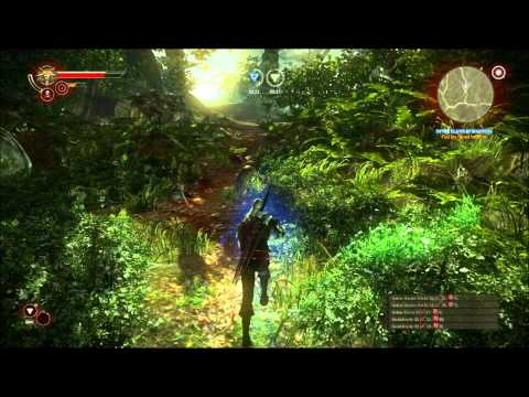 Let's Play The Witcher 2 - Part 17: Into the Woods