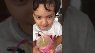 Kubi ăn thỏa thích và xem ba mẹ dạy học
