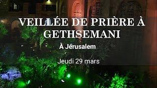 Veillée de prière dans les jardins de Gethsemani