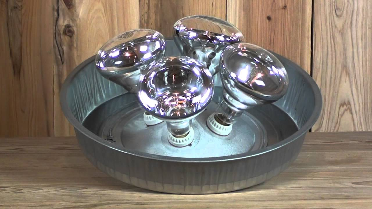 4 Bulb Brooder Lamp - YouTube