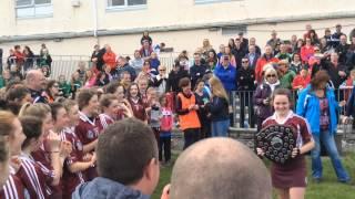 2014 Dublin Camogie Feile Final 2 - Raheny v Castleknock