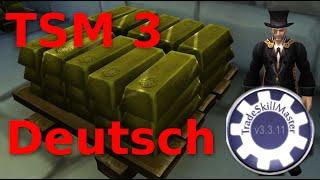 TSM 3 Guide für Einsteiger World of Warcraft - Deutsch