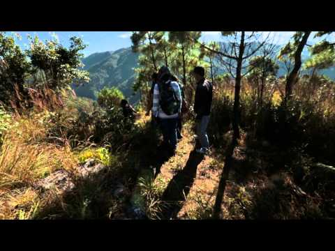 Trekking through History: Meghalaya's David Scott Trail
