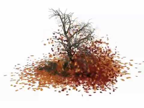 Дерево осеннее