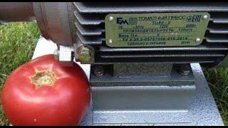 Соковыжималка для помидоров (томатный пресс) ТШМ-2. Видеообзор
