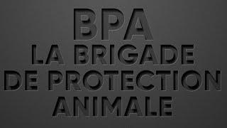 LES ADOPTES DE LA BPA   2020