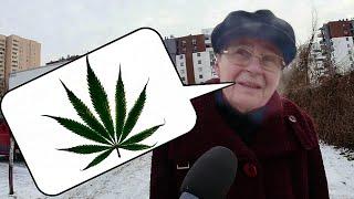 Medyczna Marihuana w Aptekach? Sonda uliczna