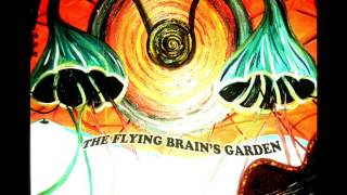 Obscure Italian Prog Psych - The Flying Brain