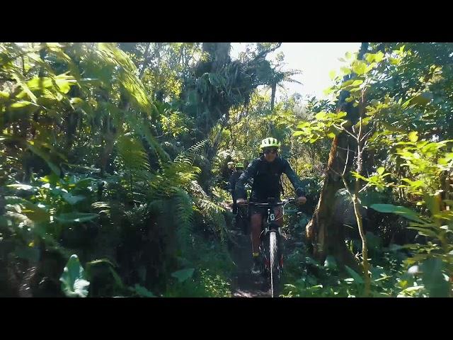 Reunion Island - Bébour