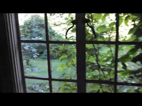 Percival Mansion Video Tour