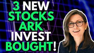 3 NEW STOCKS ARK INVEST JUST BOUGHT!   ARK INVEST STOCKS