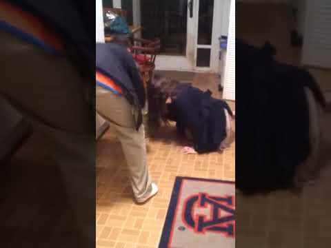 Epically Drunk White girl falling | Wasted Girl from YouTube · Duration:  2 minutes 3 seconds