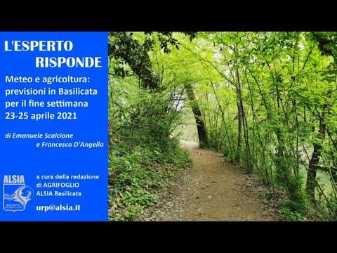 Basilicata, piogge il 23-25 aprile: bene i cereali...