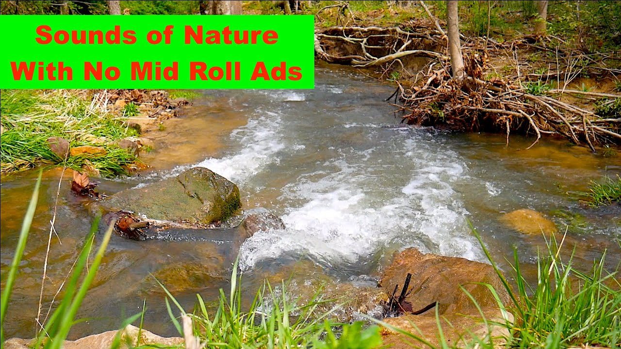 Soothing Sounds of Streams, Great for Meditating, Reading, Relaxing, Studying, Yoga and More