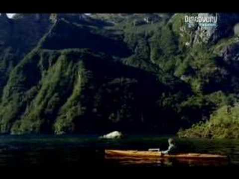 Lexus LS 460 TV Commercial