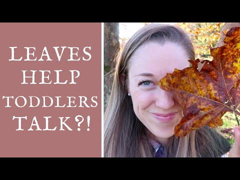 Toddler Learning Activity: How to use LEAVES to help toddlers learn