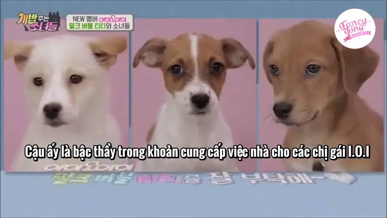 [Vietsub] {FancyJung} I.O.I - A Man Who Feeds The Dog Ep 35 Cut - YouTube  Gaming