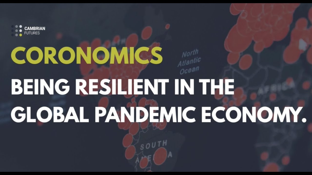 Coronomics: Being resilient in the global pandemic economy