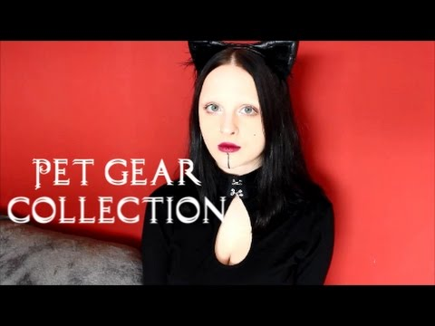 Kitten Gear Collection