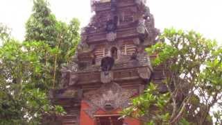 ubud-city-bali-indonesia-museum-puri-lukisan-m-the-entrance-to-ubud-museum Ubud Palace Bali