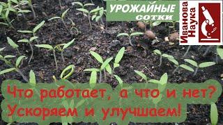 Ускоряем и улучшаем рассаду! Что работает, а что нет для улучшения роста и развития растений?