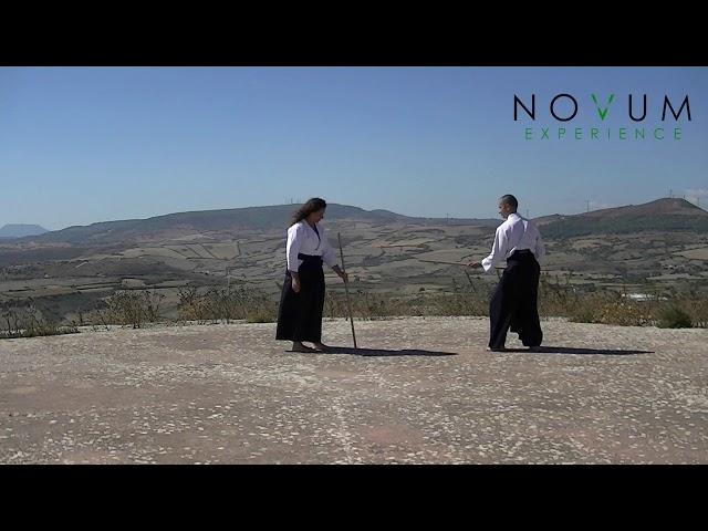 03 Kumi jo san - Aikido Novum Experience - Kumi jo Juppon -  組み杖三 - 組み杖十本  - 合氣道 - 合氣杖