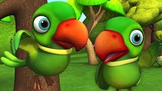 Main Tota Main Tota | मैं तोता मैं तोता | Kids Channel India | Hindi Rhymes