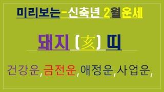 돼지띠생,2021년 양력2월운세, 건강운,사업운,애정운, 010/4258/8864