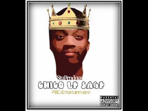 Stupid Wild - Chico Le Sage
