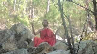 Mahavidya Tatva-Tara Mahavidya-Neel Sarswati