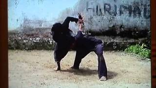 Hunyuanli et Silek Tuo par Maître Ming Shan