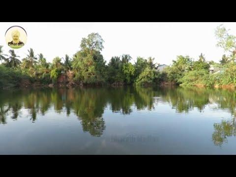 Cole Porter - Let s Do It.Kaynak: YouTube · Süre: 3 dakika3 saniye