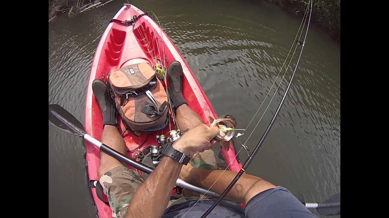 Freshwater fish kauai - Kaua I Freshwater Fishing