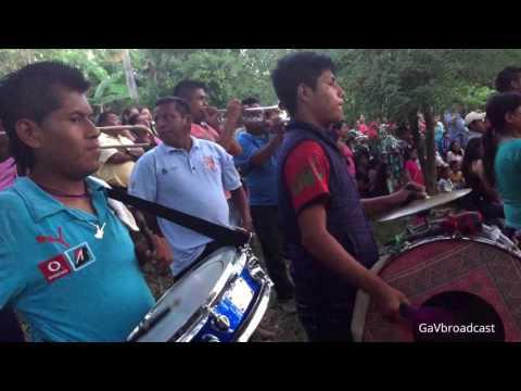 Corridos con Banda de Viento Tradicional - Rosita de Olivo y Dos Hojas Sin Rumbo
