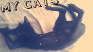 Мои кошки//порода:ориенталы.