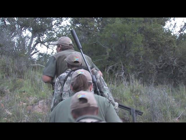 Kudu hunt