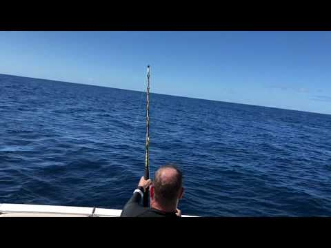 Deep Sea Fishing In St Lucia With Mystic Man Tours