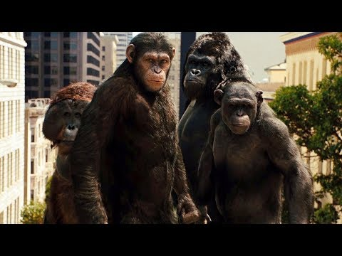 Apes Attack San Francisco Scene - Rise Of The Planet Of The Apes (2011) Movie Clip HD
