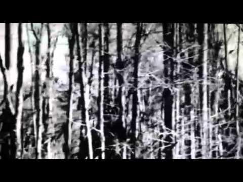 Martyn Bates & Elizabeth S. - The Killing Trees